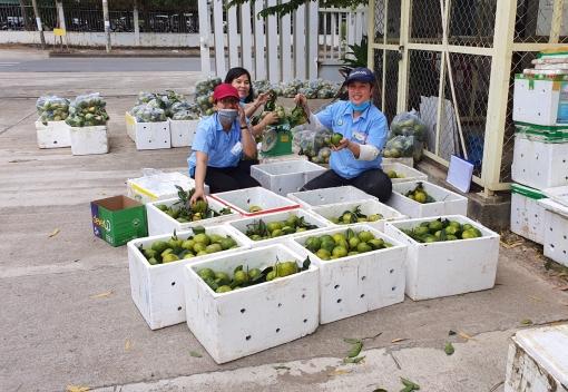 Hỗ trợ công nhân chăm sóc sức khoẻ trong mùa dịch
