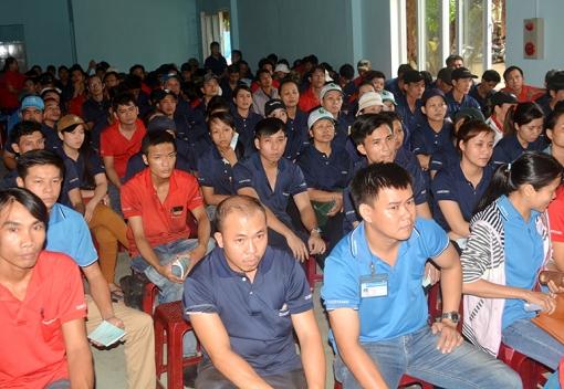Tuyên truyền pháp luật tại Công ty TNHH Công nghiệp Daeryang VN